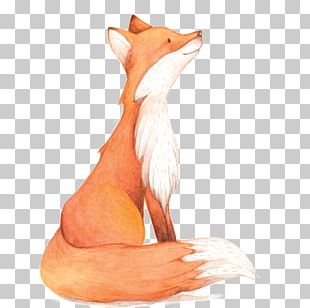 Watercolor Painting Fox PNG