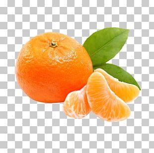 Orange Juice Tangerine Mandarin Orange Satsuma Mandarin PNG