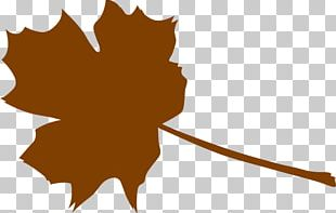 Autumn Leaf Color Computer Icons PNG