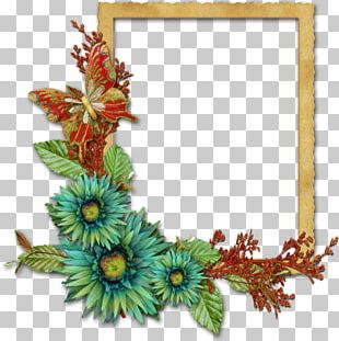 Frames Floral Design Flower Photography PNG