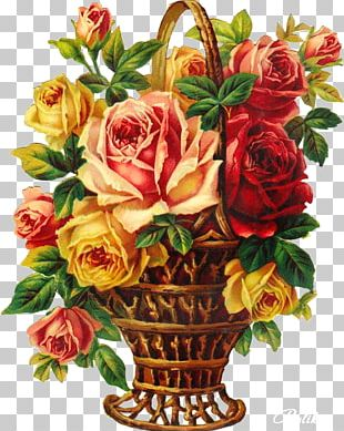 Garden Roses Floral Design Flower Bouquet Cabbage Rose PNG