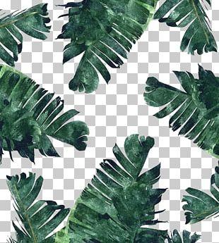 Banana Leaf Canvas Print Watercolor Painting PNG