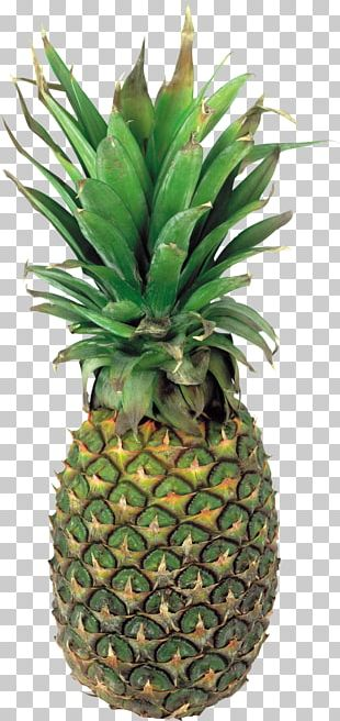 Pineapple Portable Network Graphics Juice Fruit PNG