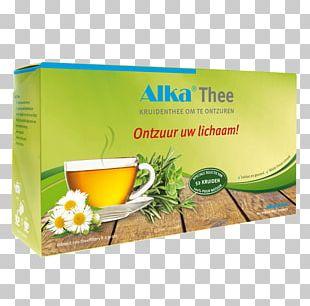 Herbal Tea Herbal Tea Ingredient Tea Garden PNG