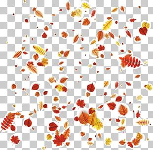 Petal Floral Design Orange Pattern PNG