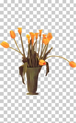 Plant Bonsai Vase PNG