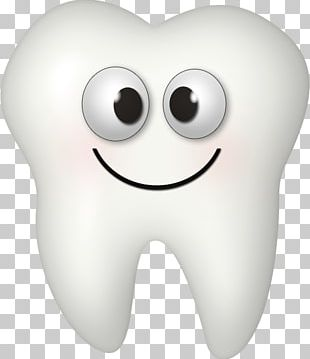 Tooth Fairy Dental Braces Human Tooth PNG