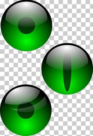 Human Eye Iris Visual Perception Pupil PNG
