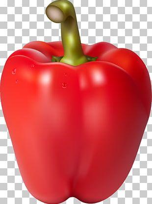 Chili Con Carne Bell Pepper Chili Pepper Habanero PNG