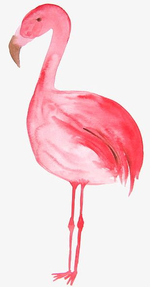 Red Hand Painted Flamingo PNG