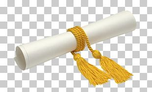 Graduate Diploma Stock Photography Academic Degree Graduation Ceremony PNG