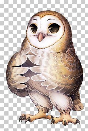 Barn Owl Bird Furry Fandom Long-eared Owl PNG