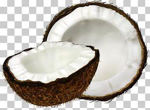 Coconut Water Coconut Milk Coconut Cake PNG