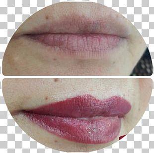 A Sobrancelharia Permanent Makeup Eyebrow Lip Gloss Pigment PNG