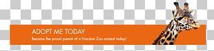 Giraffe Font Brand Orange S.A. PNG