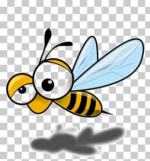 Honey Bee Insect Drawing Beehive PNG