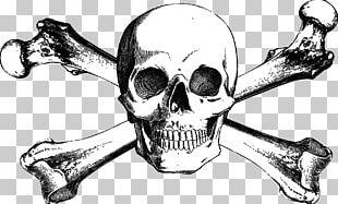 Skull And Bones Skull And Crossbones Drawing PNG