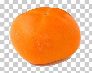 Juice Valencia Orange Clementine Citrus Xd7 Sinensis PNG