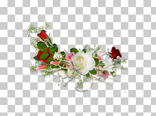 Flower Photography Garden Roses PNG