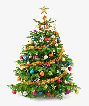 Green Christmas Tree Material PNG