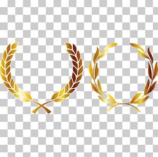 Medal Crown Gold Laurel Wreath PNG
