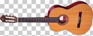 Acoustic-electric Guitar Musical Instruments String Instruments Tiple PNG