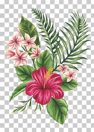 Drawing Flower Sketch PNG