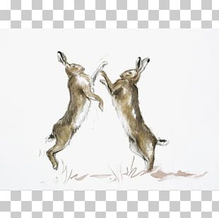 Hare Boxing Watercolor Painting Paper Punch PNG