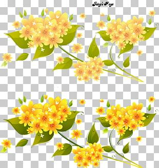 Flower Floral Design PNG