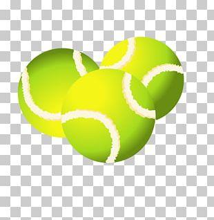 Tennis Ball Sport PNG