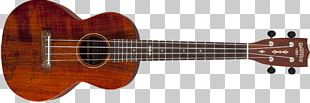 Ukulele Bass Guitar Bass Guitar Musical Instruments PNG