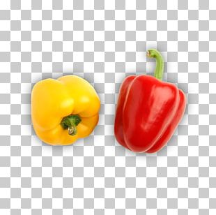Bell Pepper Habanero Chili Pepper PNG