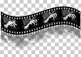 Photographic Film Photography Roll Film Black And White PNG