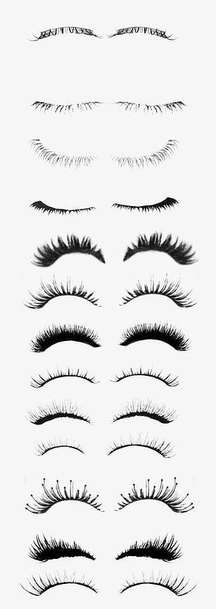 Eyelash Collection PNG