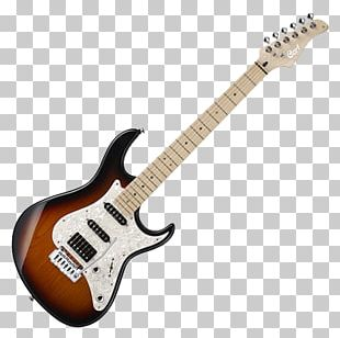 Electric Guitar Fender Stratocaster Cort Guitars Bass Guitar PNG