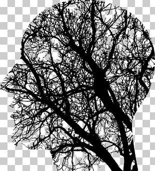 Brain Injury Neuroscience Human Brain Working Memory PNG