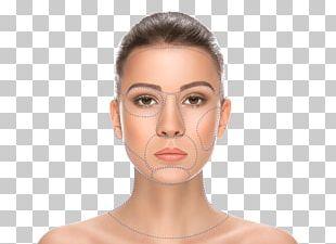 Light Skin Eyebrow Face Human Skin Color PNG