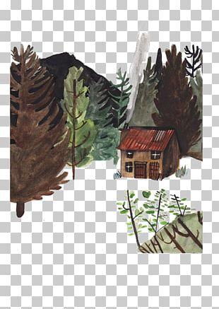 Drawing Art Illustrator Illustration PNG