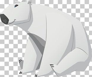 Baby Polar Bear Cuteness PNG