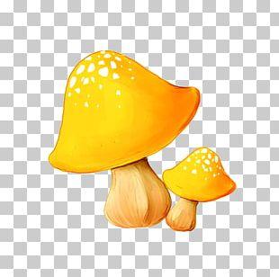 Mushroom Enokitake PNG