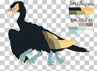 Water Bird Goose Bird Of Prey Cygnini PNG