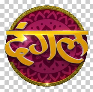 Television Channel Dangal TV Television Show Zee TV PNG