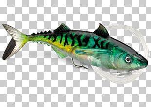 Fishing Baits & Lures Plug Mackerel PNG