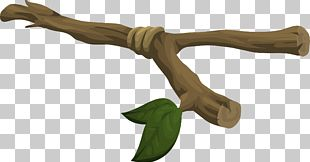 Twig Branch PNG