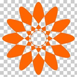 Unique Mandala Patterns. PNG