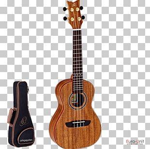 Ukulele For Dummies String Instruments Banjo Concert PNG