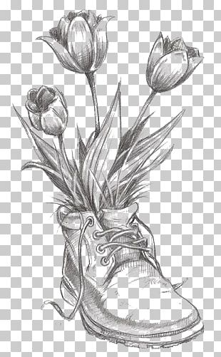 Drawing Flower Tulip Pencil Sketch PNG