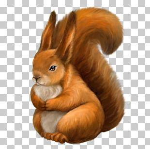 Tree Squirrels Rebus PNG