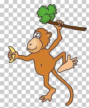 Drawing Monkey PNG