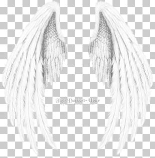 Angel Wing Black And White Monochrome PNG